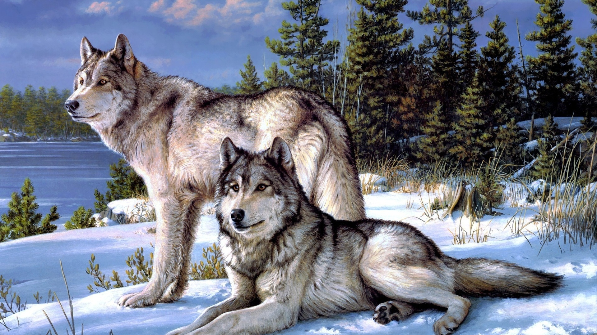 Most Inspiring Wallpaper Mac Wolf - forest-dainty-wolves-winter_wallpapers_52357_1920x1080  Gallery_279512.jpg