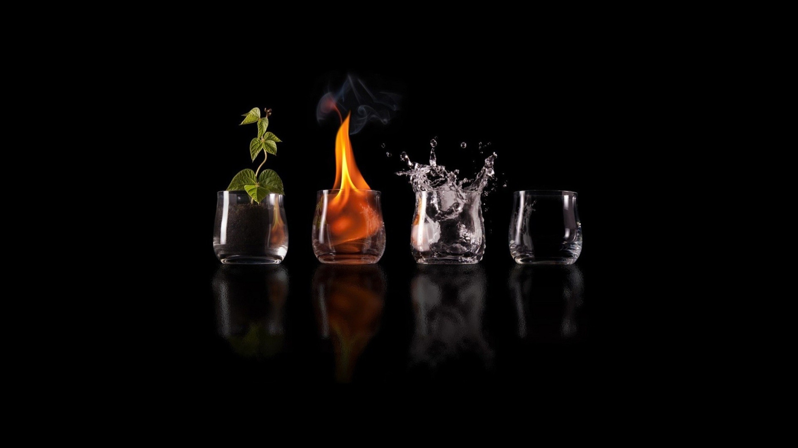 2560x1440 Four Elements Glasses