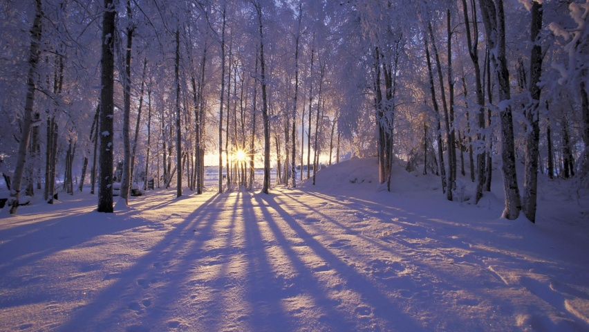 825x315 Free Winter Beautiful Facebook Cover Photo