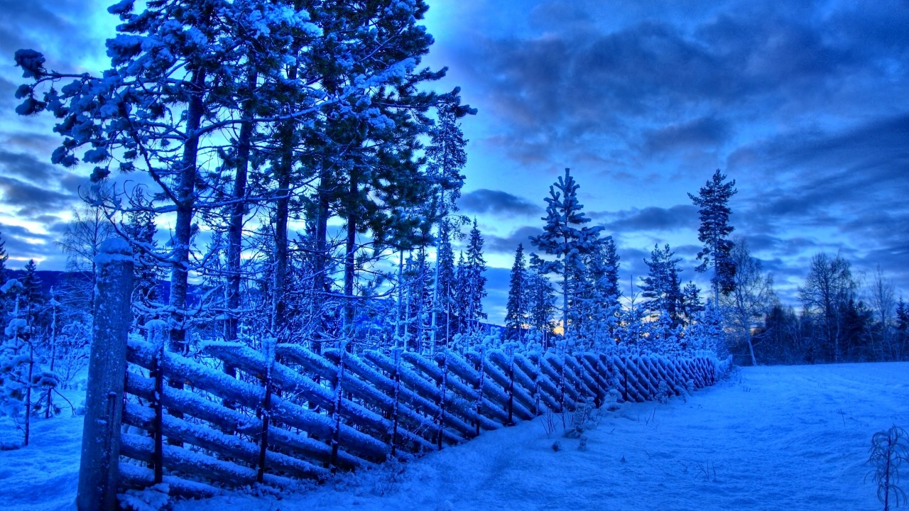 1280x720 Frozen fence, snow, winter, tree, sky, cloud, nature