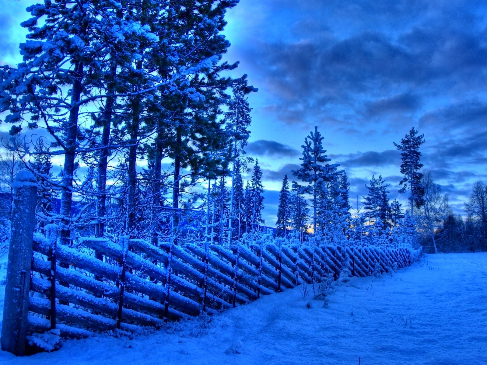 1500x500 Frozen fence, snow, winter, tree, sky, cloud, nature
