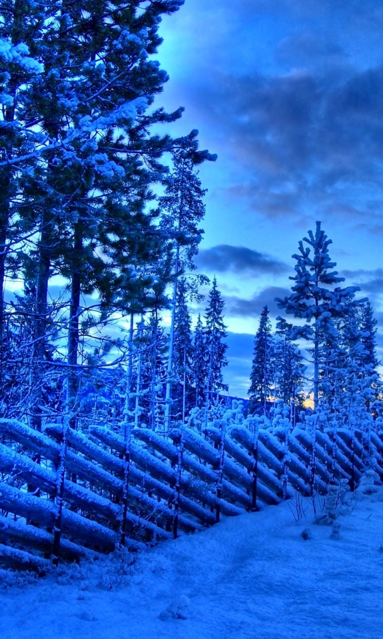 768x1280 Frozen fence, snow, winter, tree, sky, cloud, nature