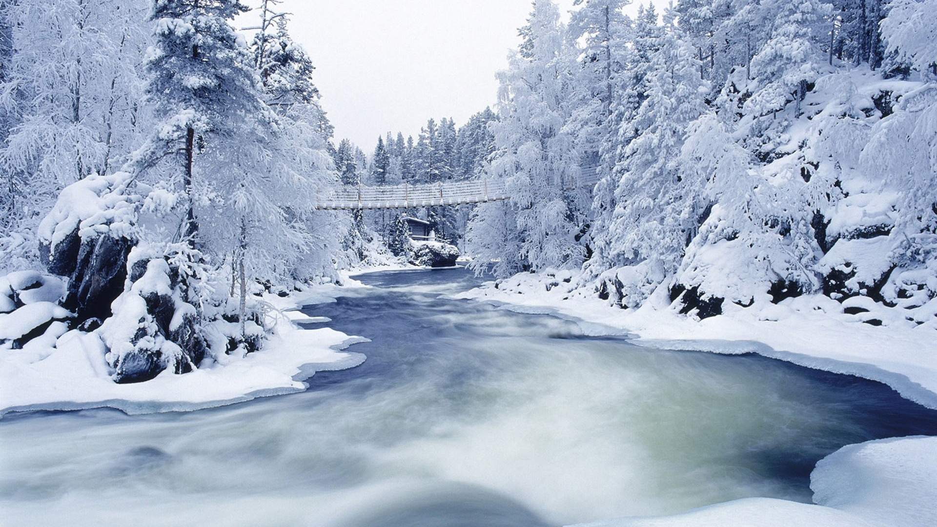 frozen river Once america's best-selling car, the ford taurus dies, again.