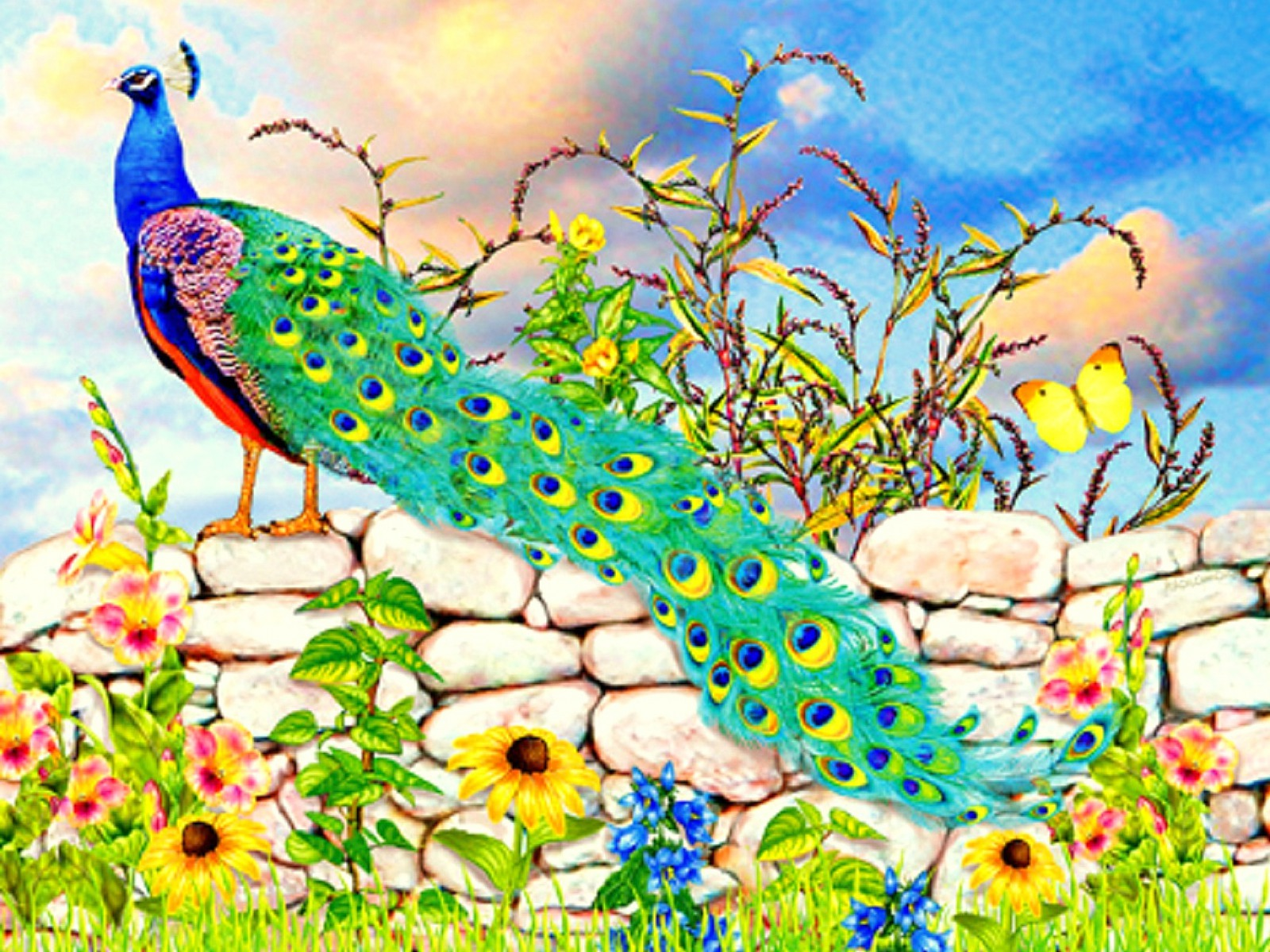 Peacock Art Photography Wallpaper Hq Backgrounds: Gallant Peacock Stone Wall Wallpapers