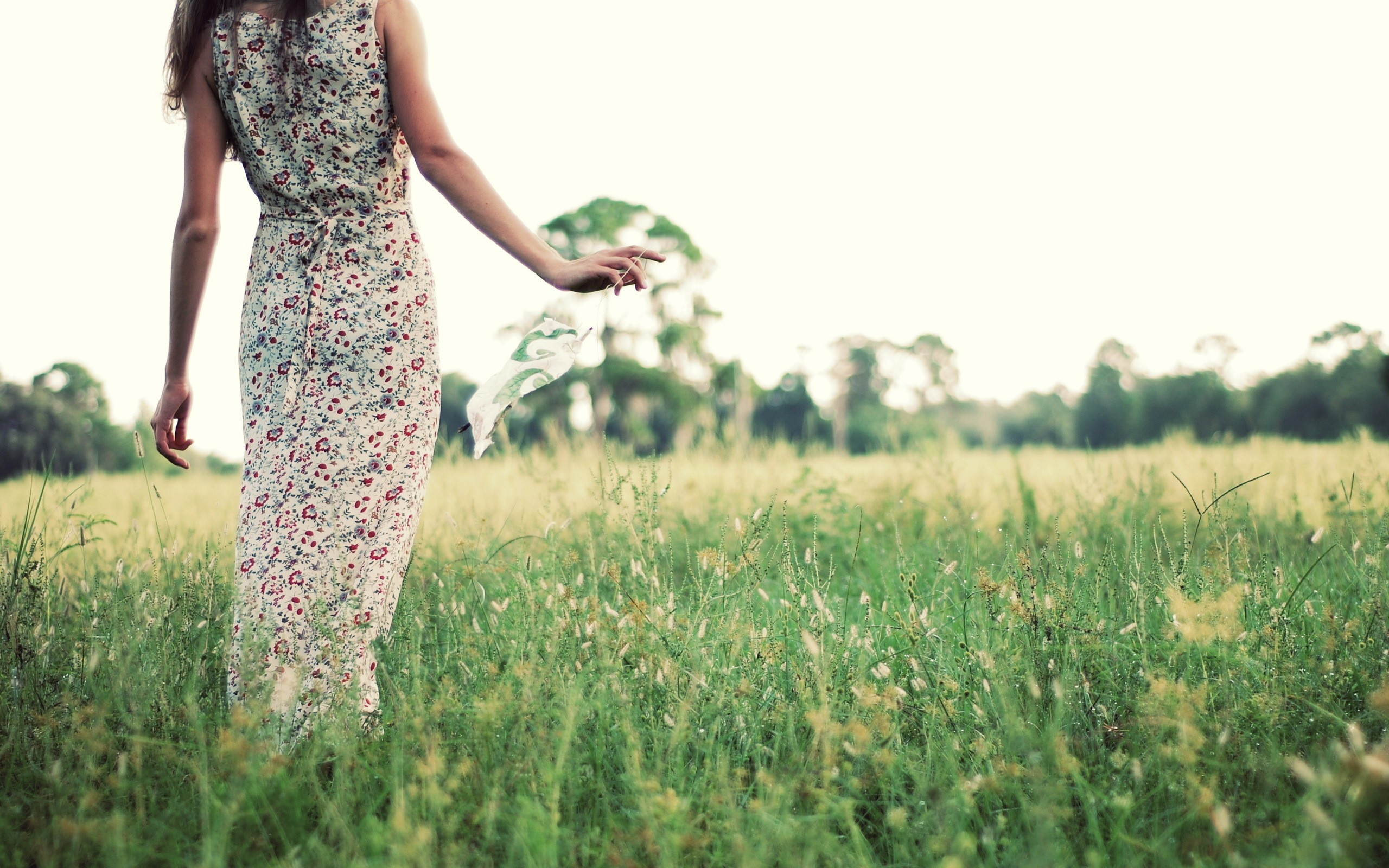 girl on spring field wallpapers girl on spring field