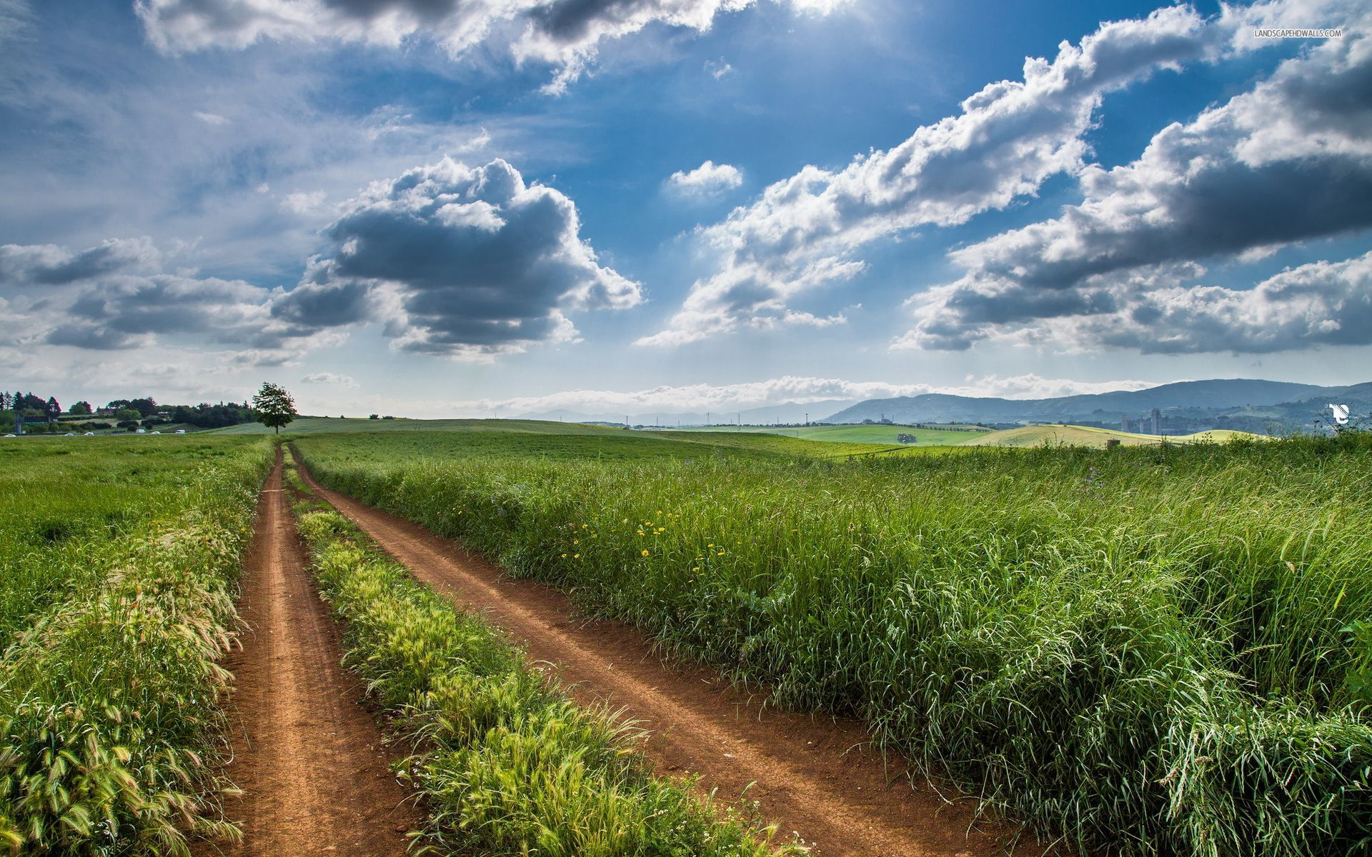 Image: Grass Fields Road Trees Clouds wallpapers and stock photos. «