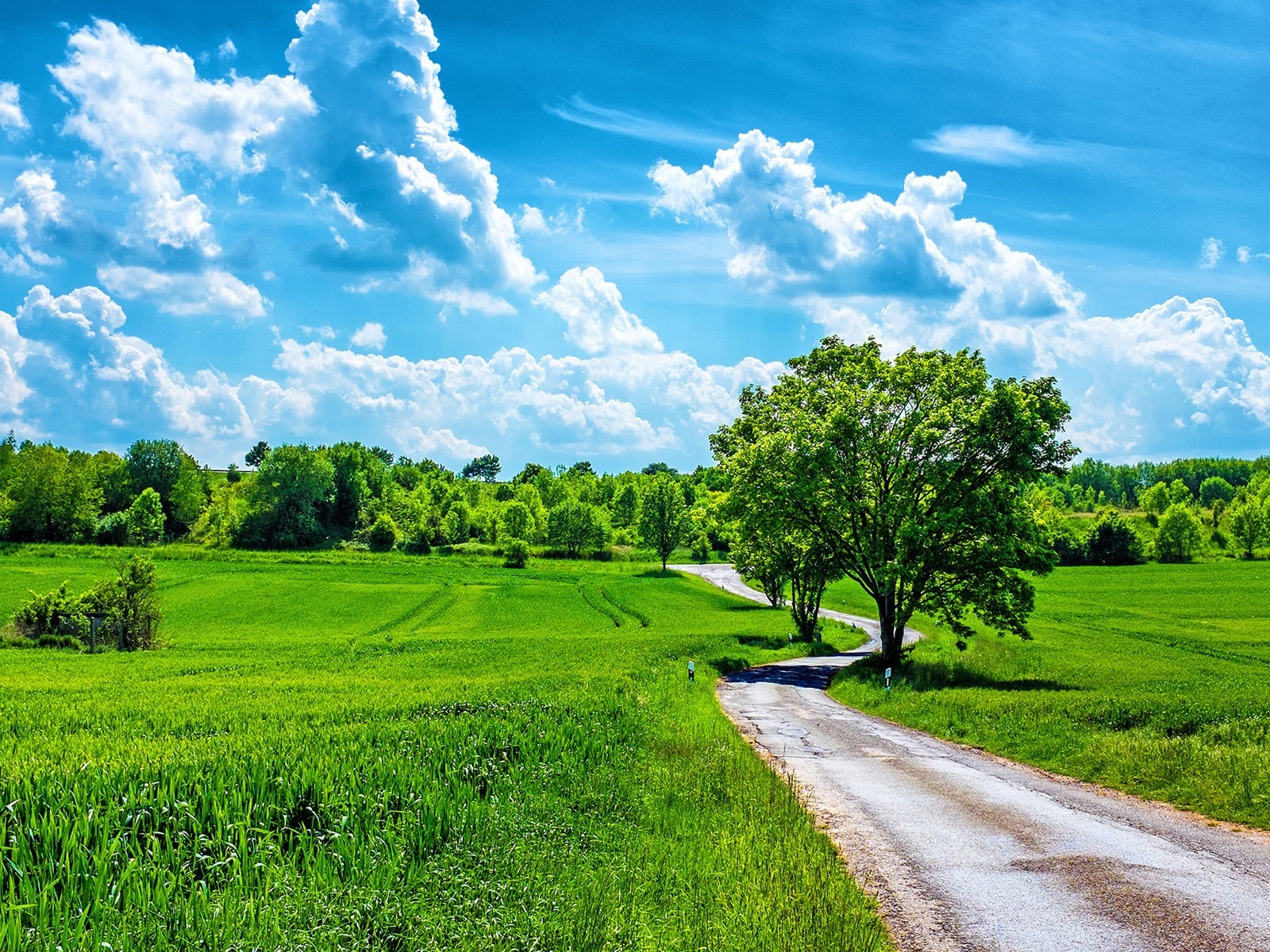1600x1200 Grass Fields Road Trees Clouds Desktop Pc And