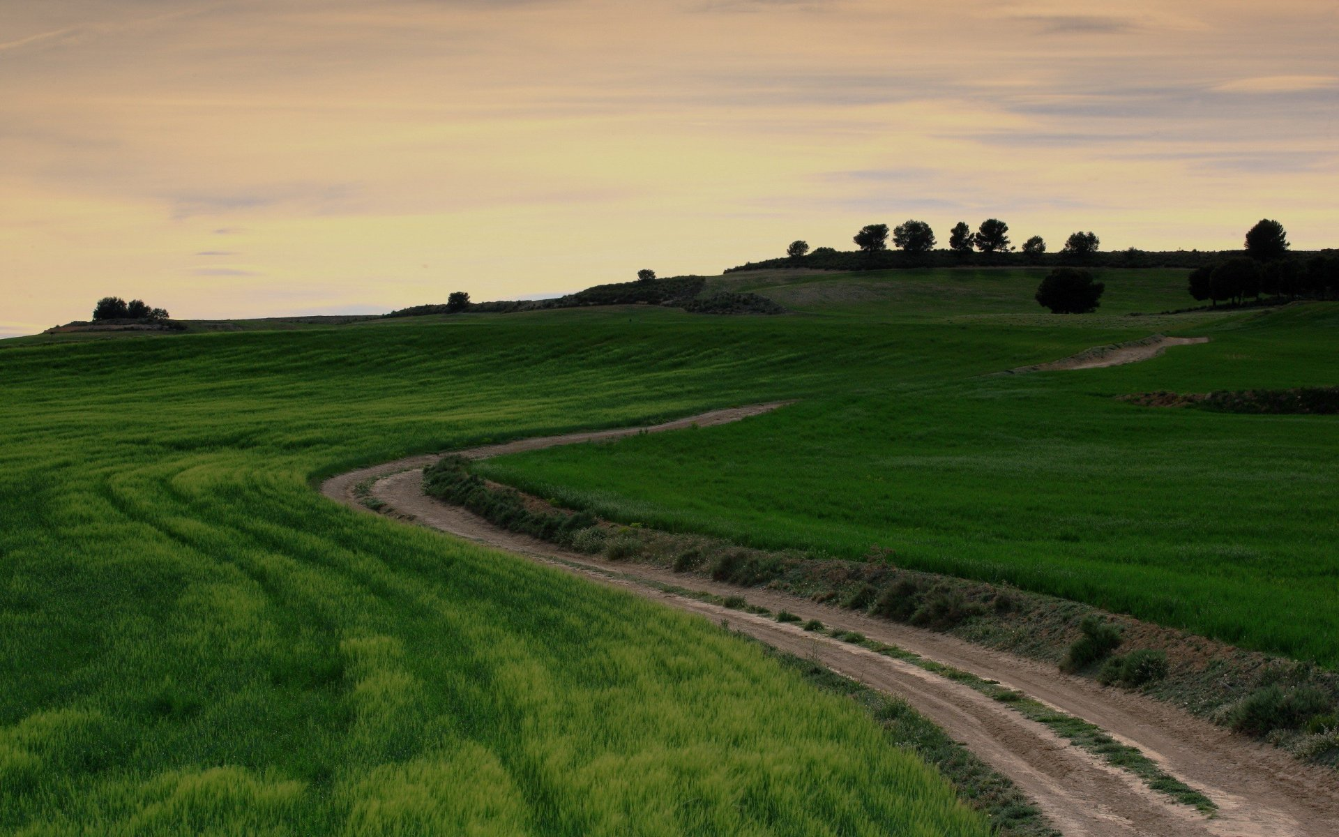 grass green field road country wallpapers