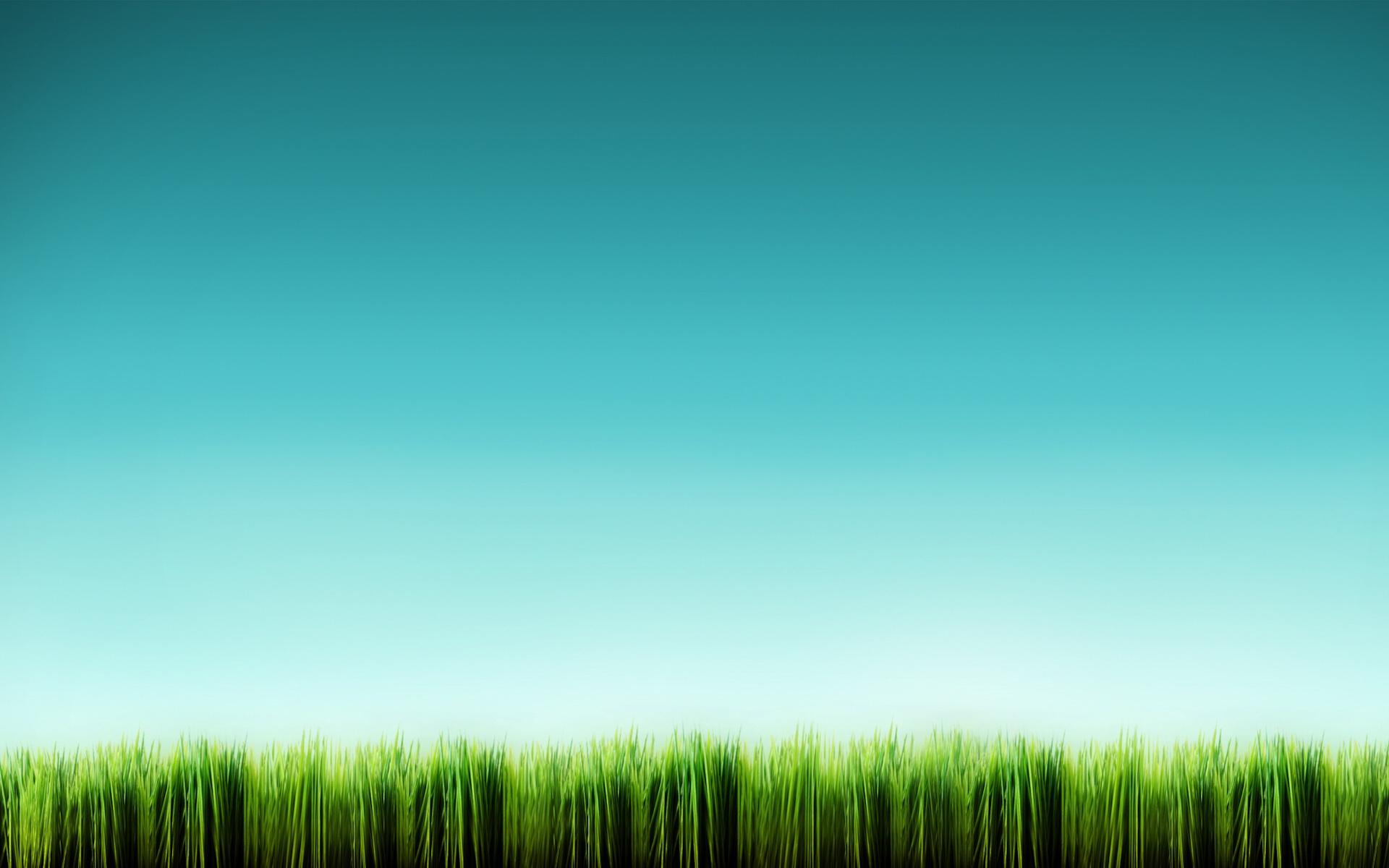 1920x1200 grass line desktop pc and mac wallpaper for Wallpaper home line