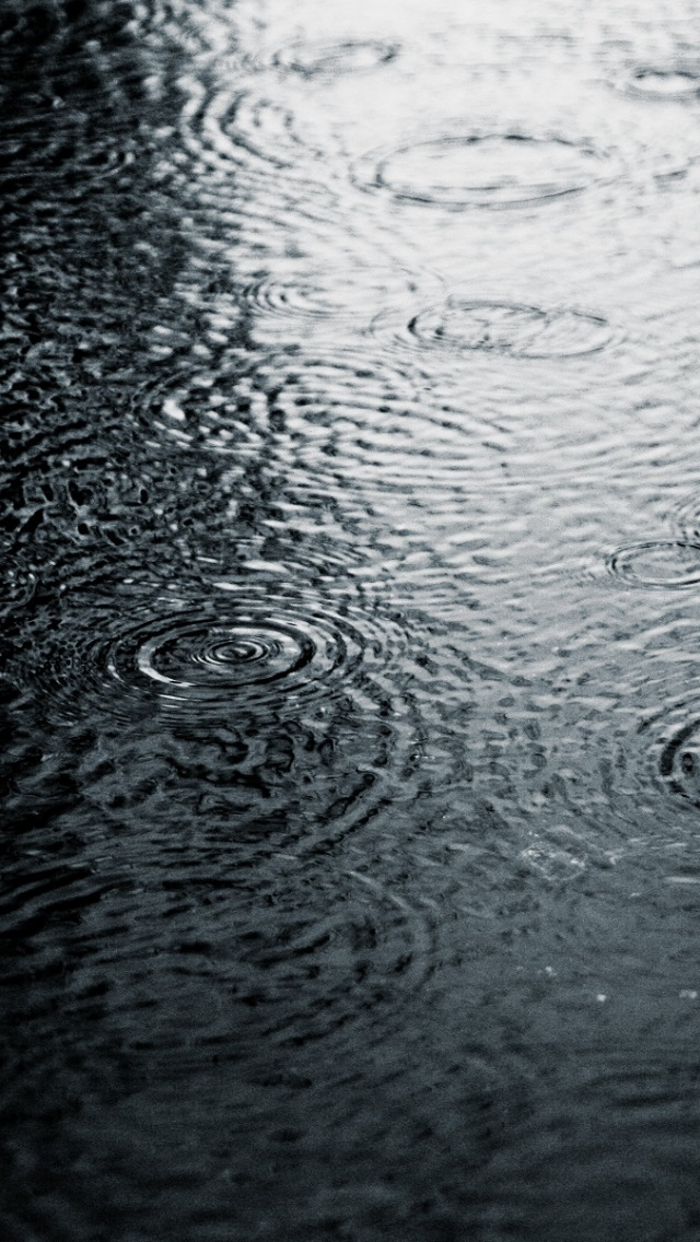 640x1136 Grayscale Rain Iphone 5 wallpaper