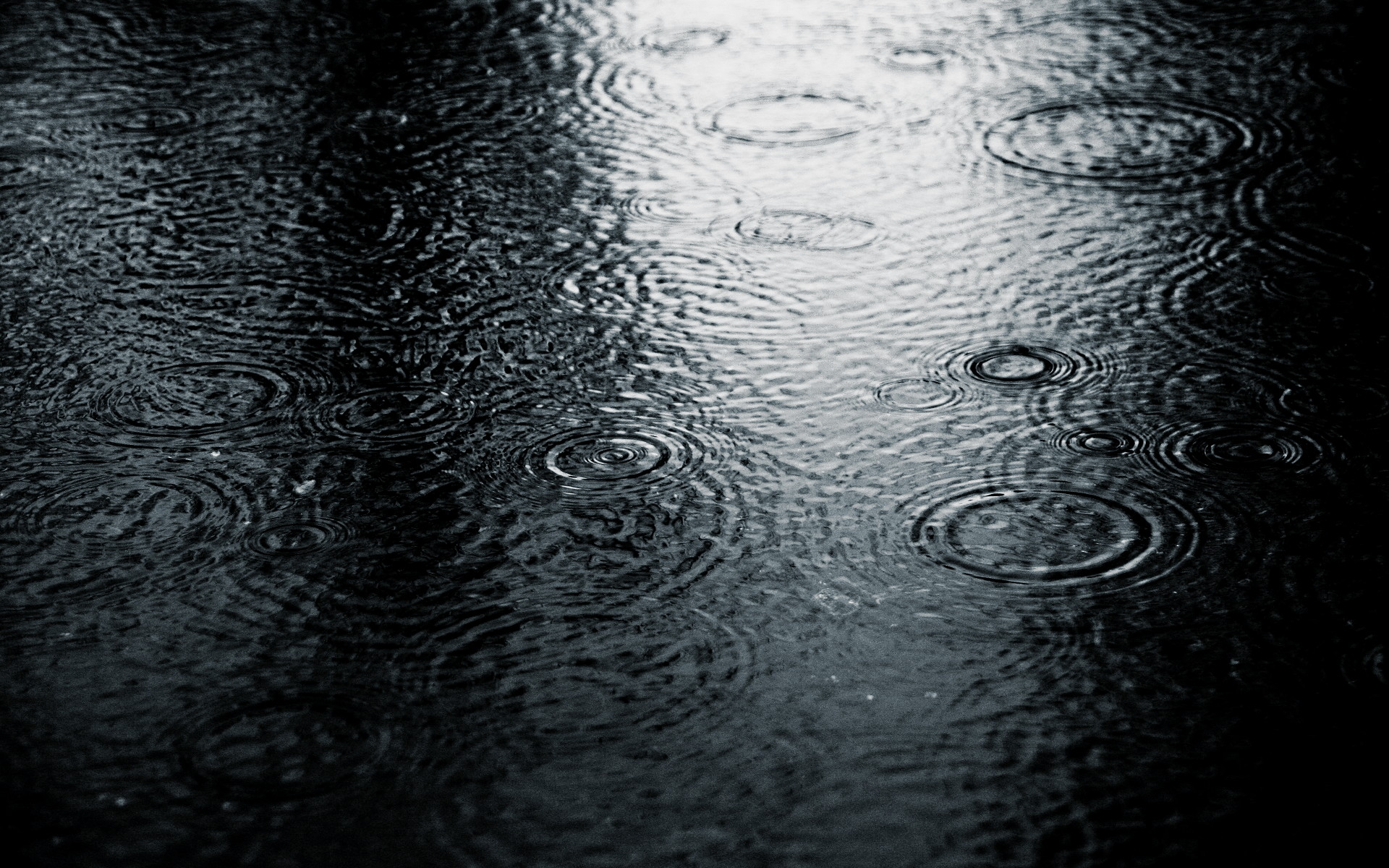 grayscale rain wallpapers 34328 1920x1200