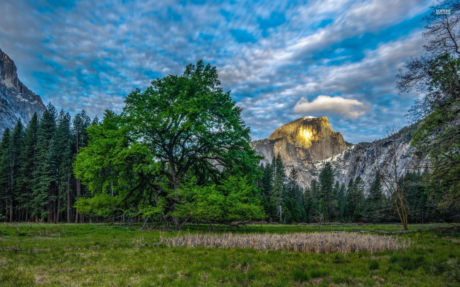 Great Sunny Half Dome Yosemite Wallpapers Great Sunny