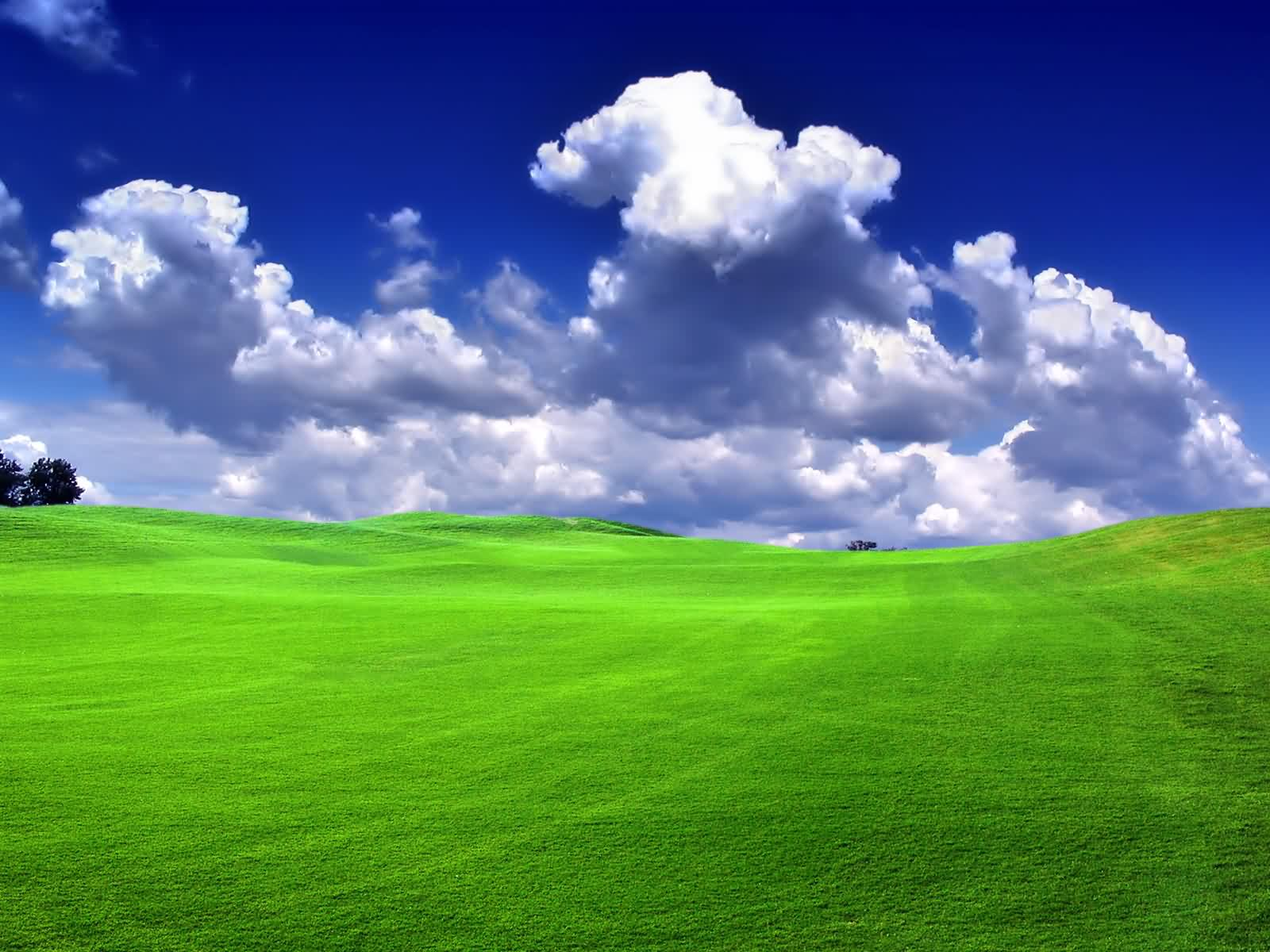 1600x1200 green field desktop pc and mac wallpaper - Desktop wallpaper 1600x1200 ...
