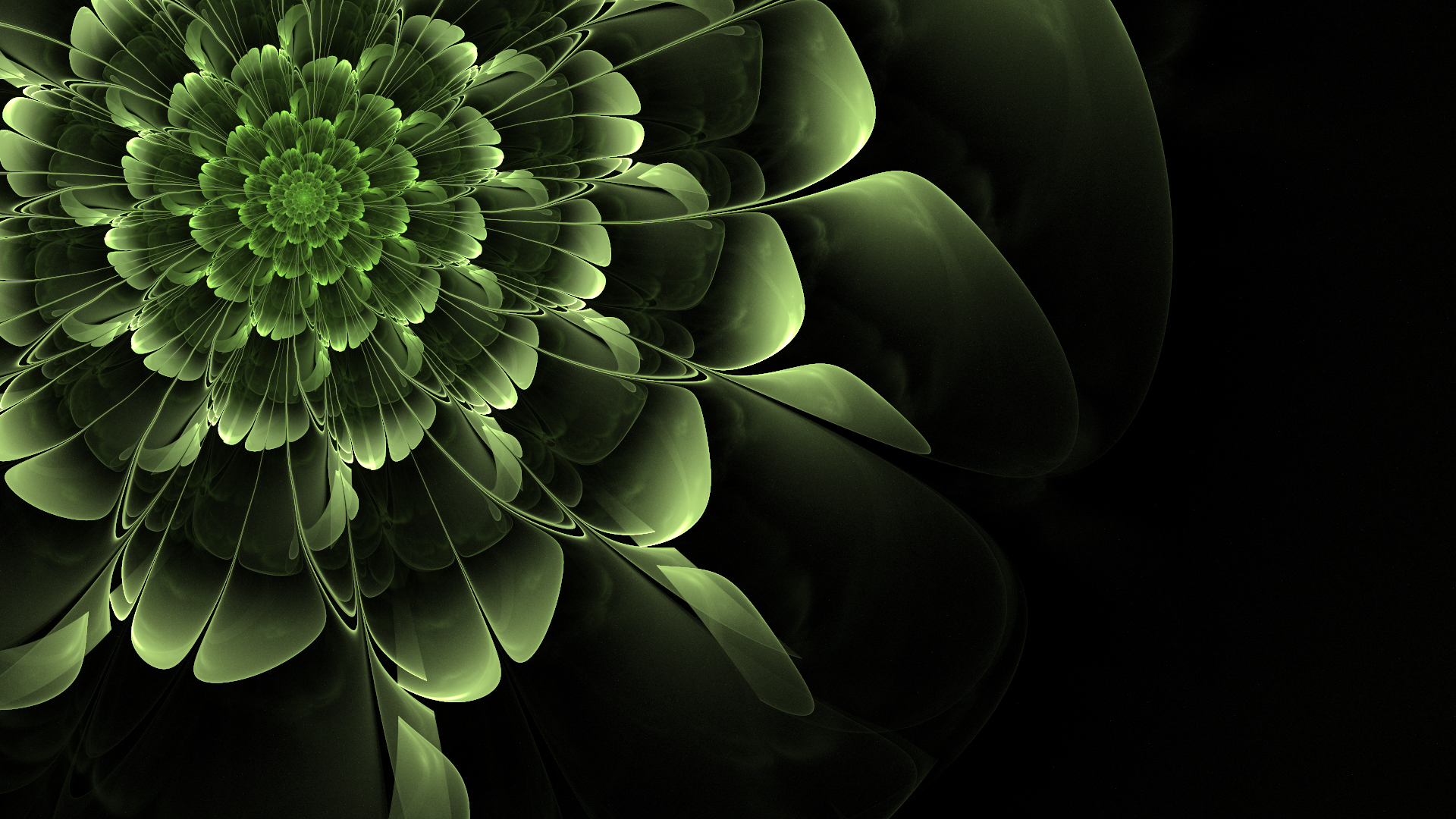 Green Flower desktop PC and Mac wallpaper