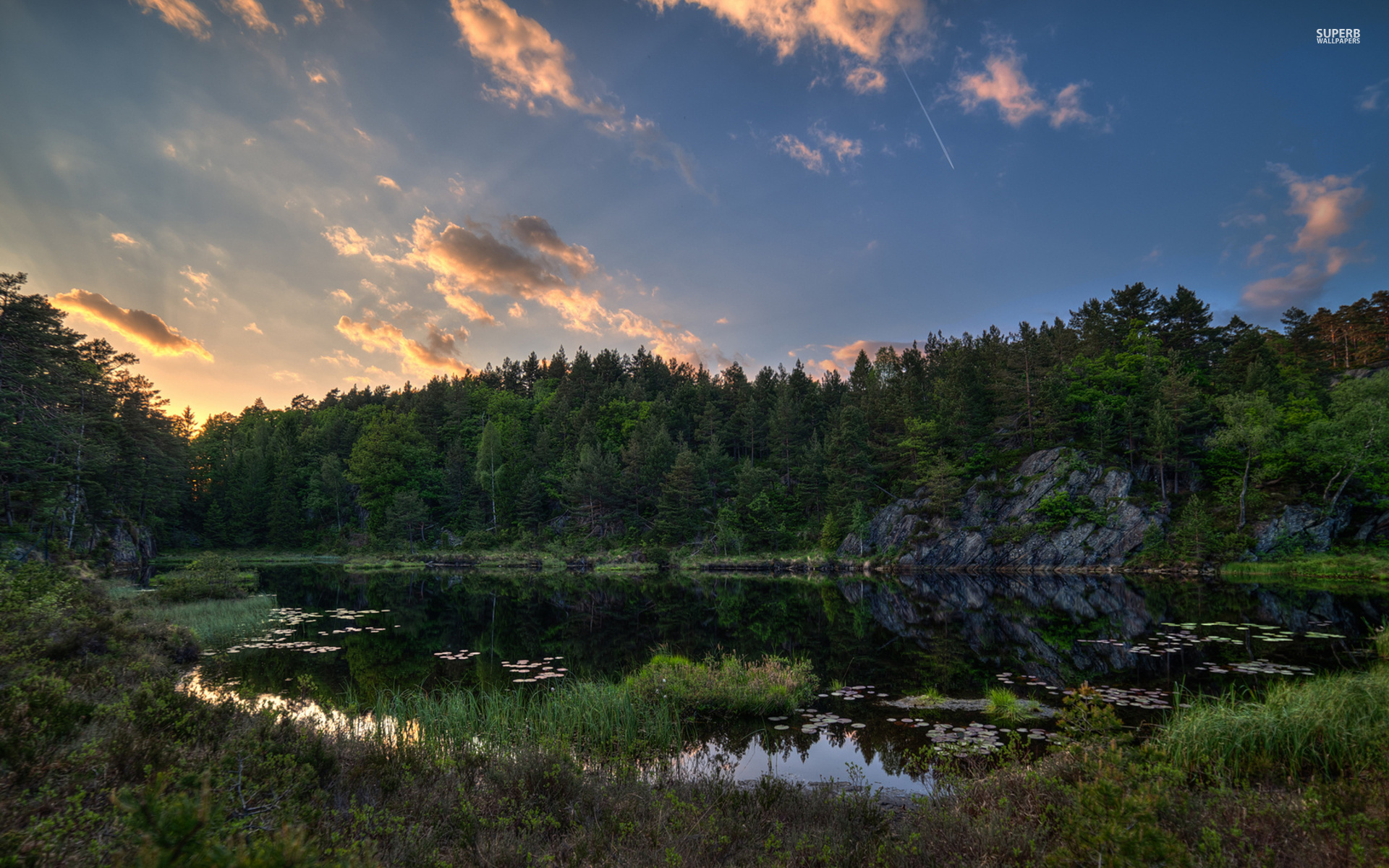 Lake Forest Sports Cars >> Green Forest Lake Plants Sky wallpapers | Green Forest ...