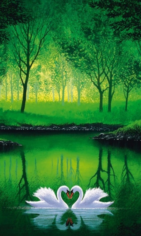 480x800 Green Forest Pond Swans Couple