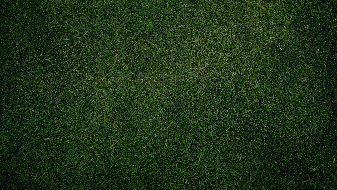 1280x720 Green Grass Background Desktop PC And Mac Wallpaper