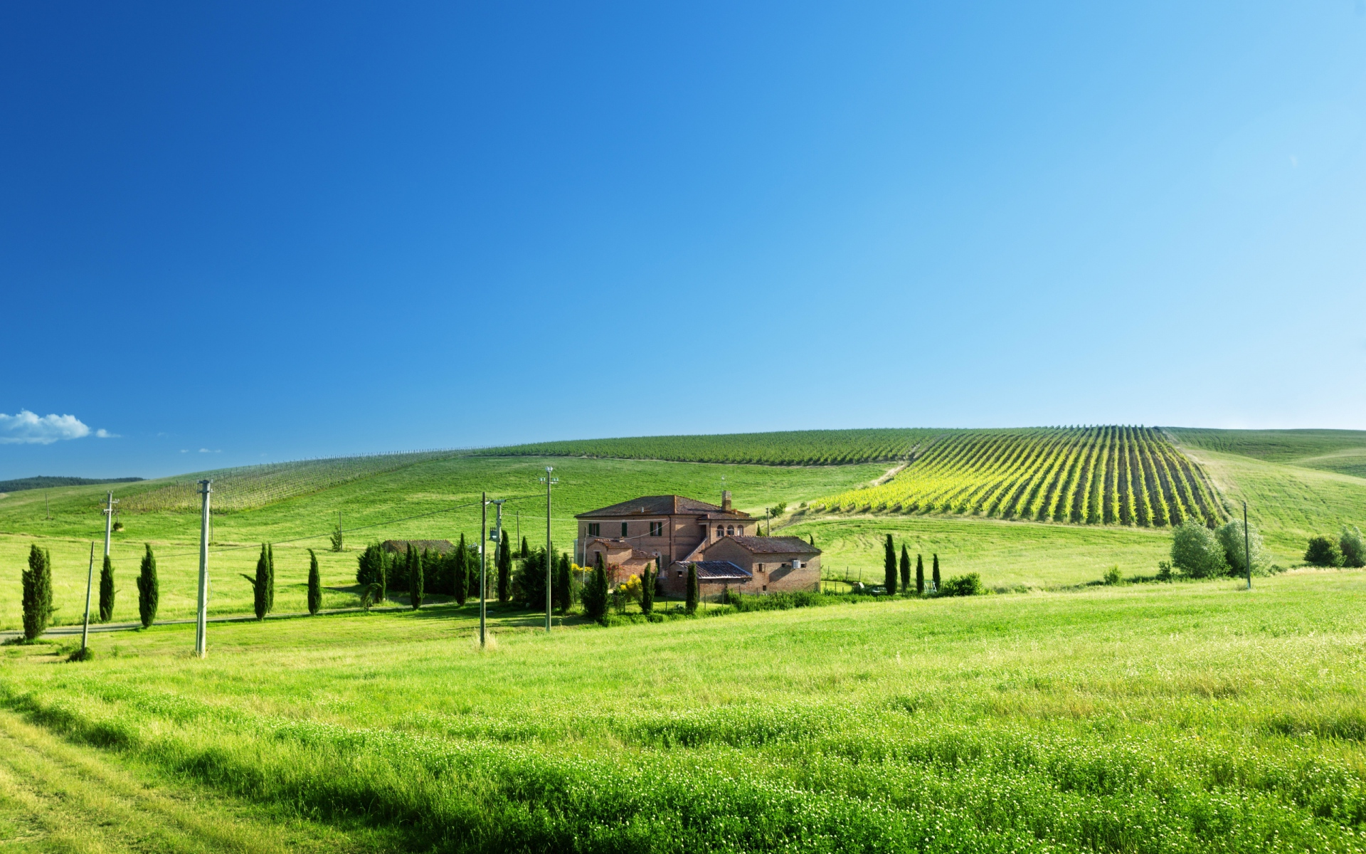 Green hills trees houses italy wallpapers green hills for Green italy