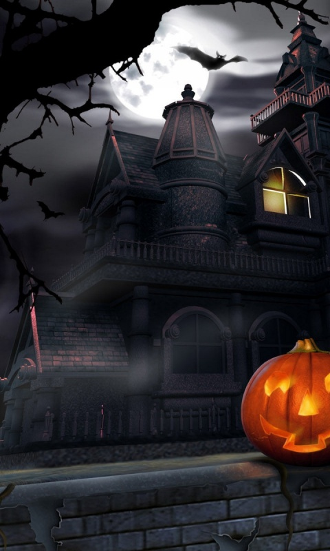 480x800 Halloween  house, haunted