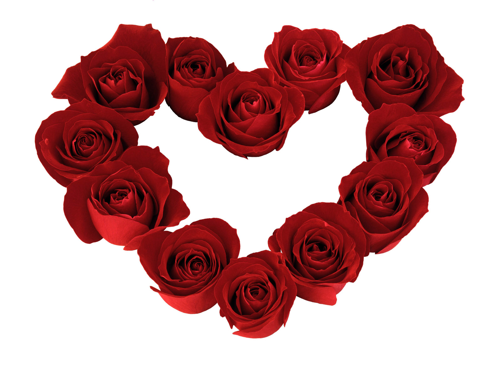 heart and roses background - photo #13