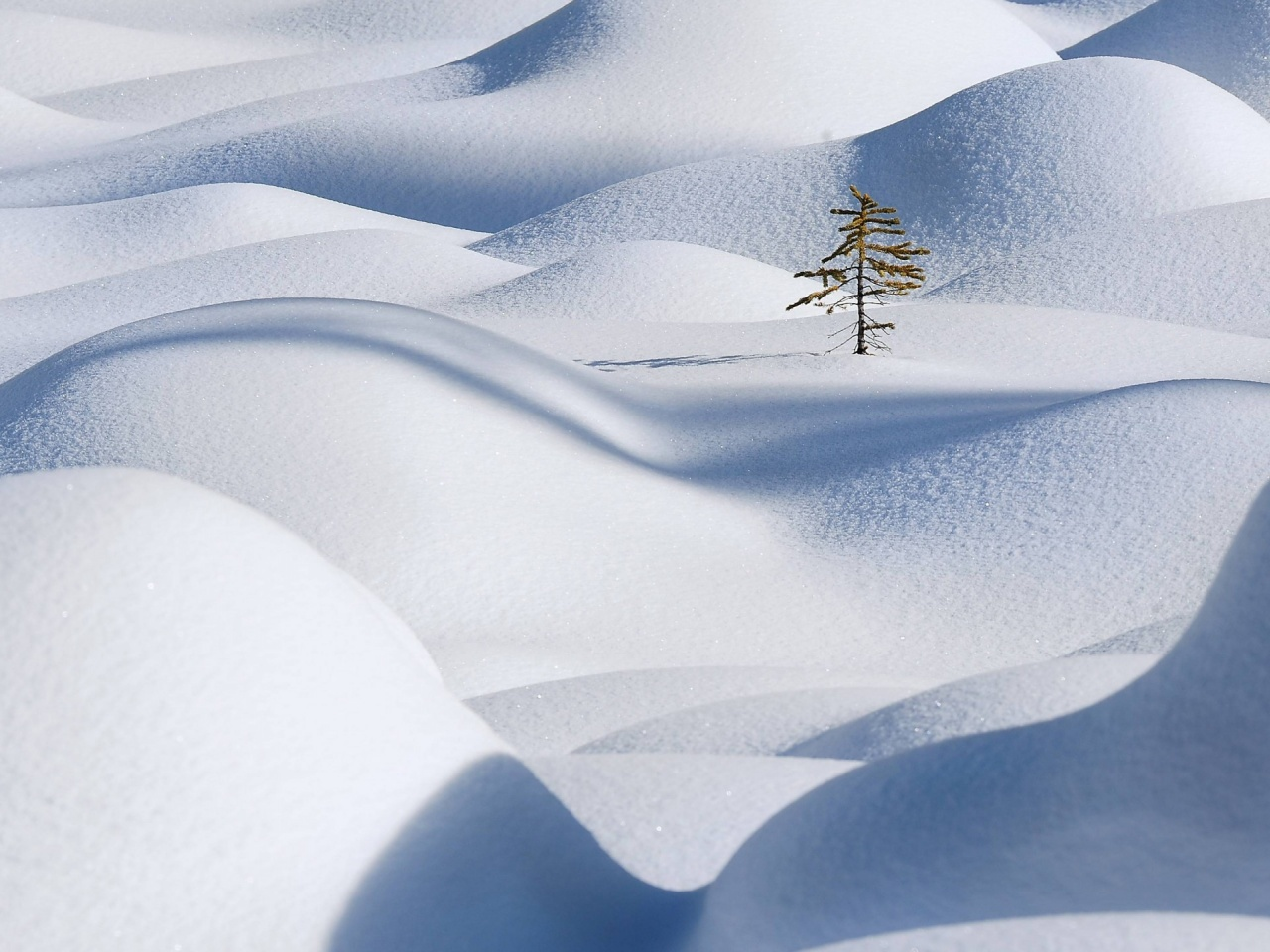 1280x960 Hills Covered With Snow Desktop Pc And Mac Wallpaper