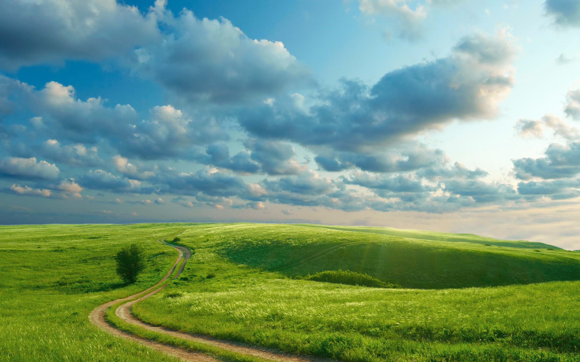 Sky Wallpapers: Hills Grass Path Tree Sky Wallpapers