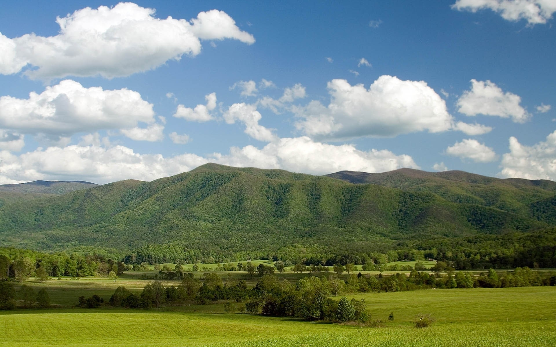 Hilly Mountains Trees & Sky wallpapers | Hilly Mountains ...