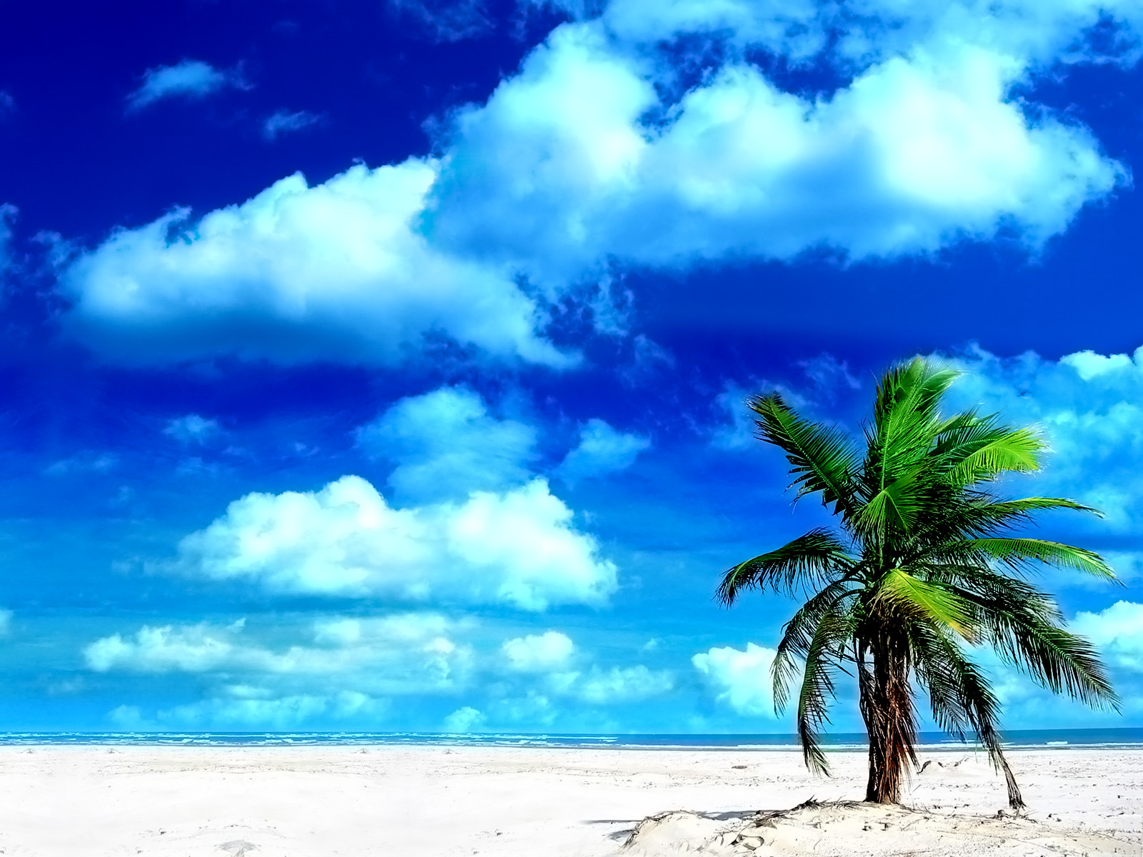 1600 Holiday Beach desktop wallpapers and stock photos
