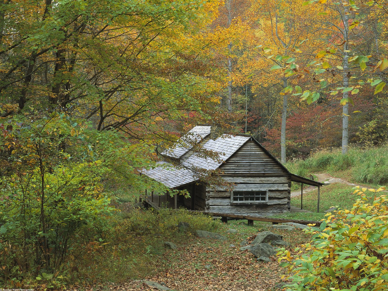 Cabin In The Forest Wallpaper · iBackgroundWallpaper