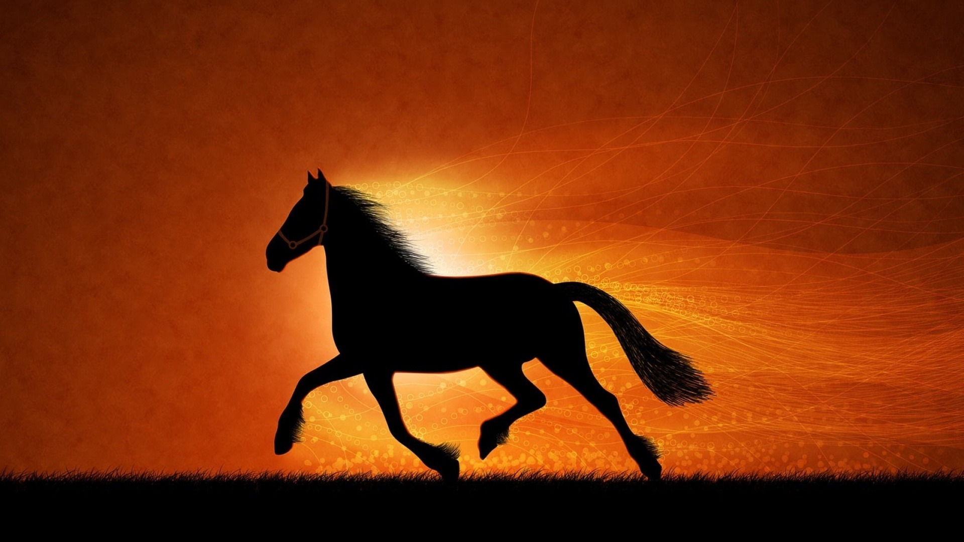 1920x1080 horse at sunset silhouette desktop pc and mac