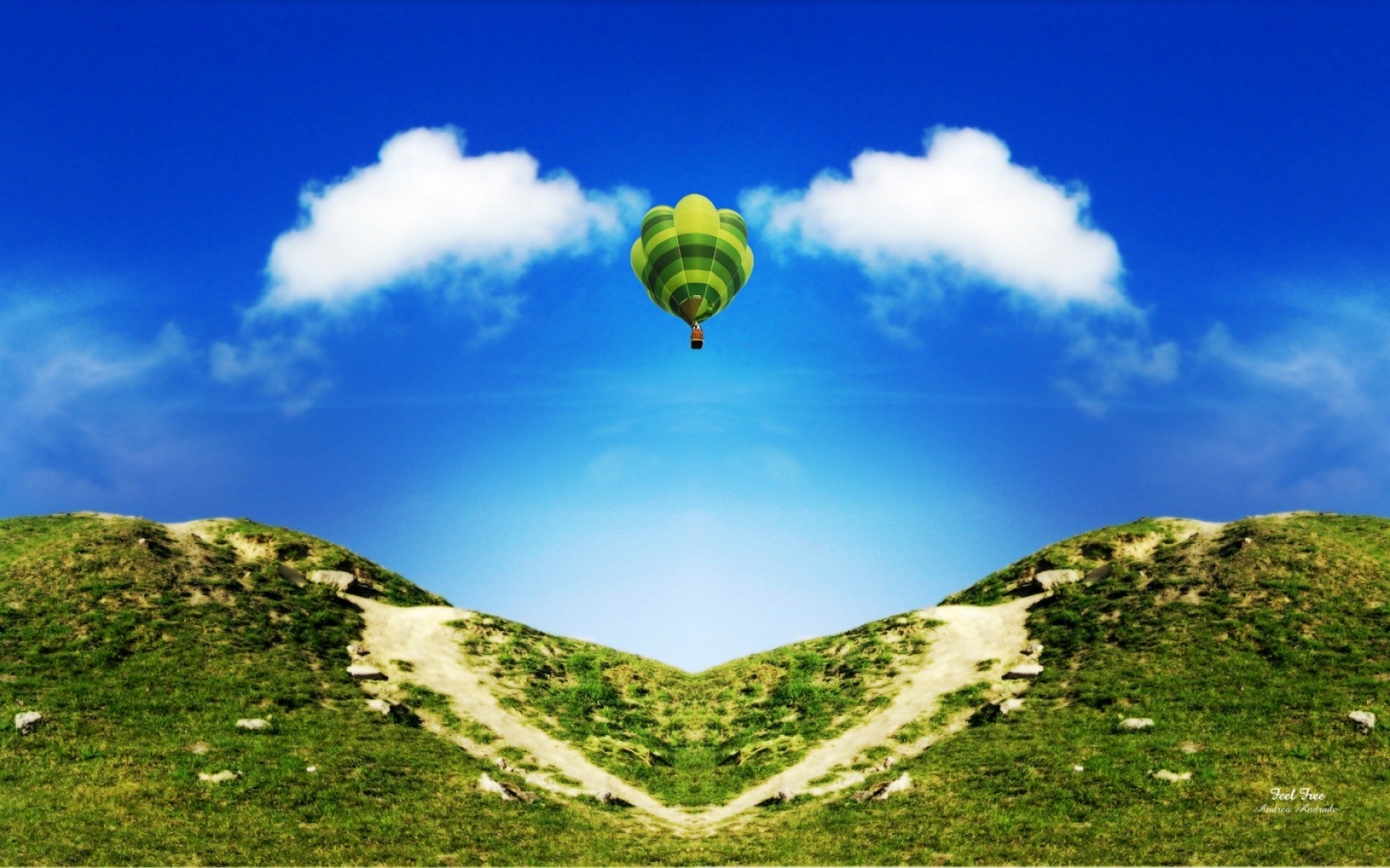 hot air balloon heart nature wallpapers | hot air balloon heart