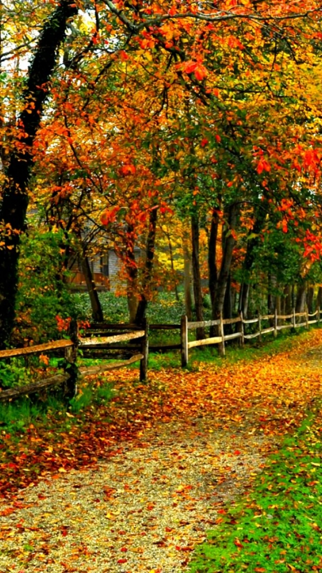 640x1136 House Fence Side Walk Autumn Iphone 5 Wallpaper