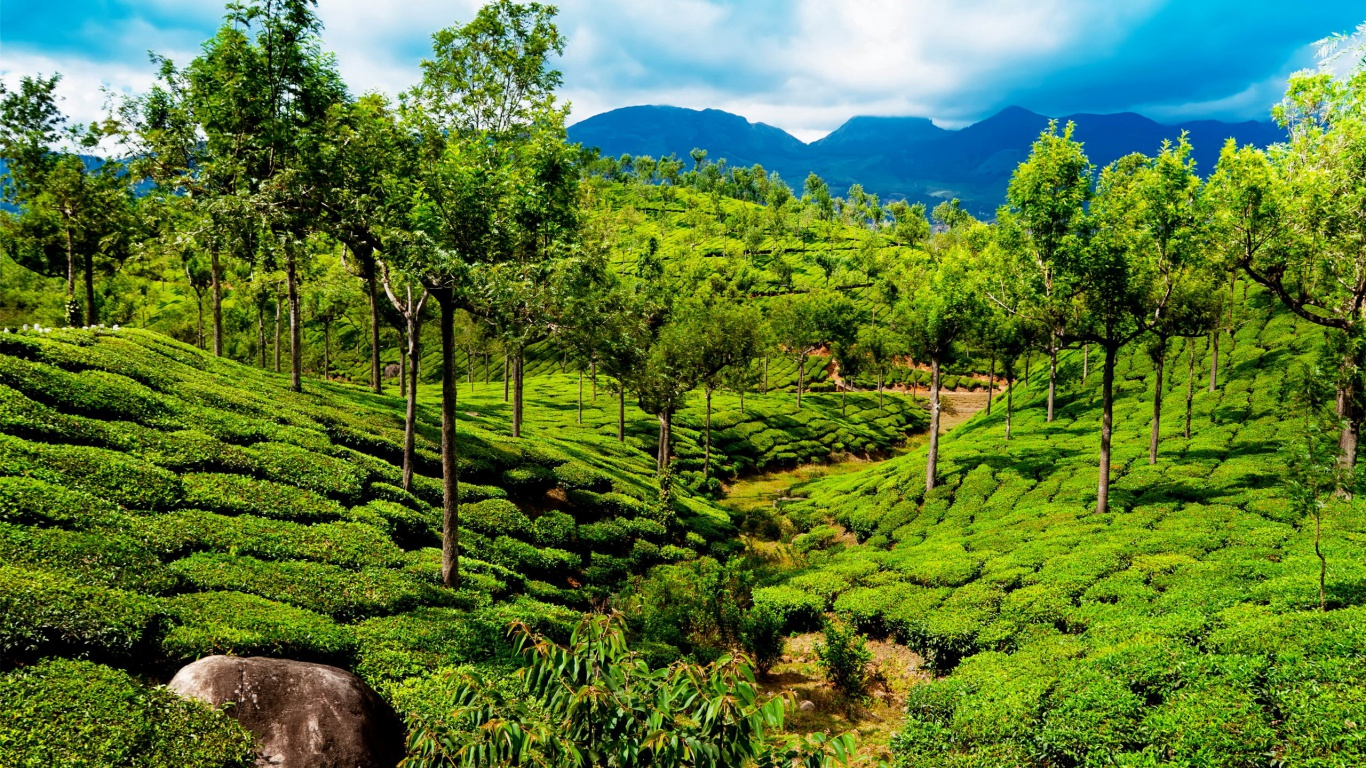 1366x768 India Kerala Desktop Pc And Mac Wallpaper