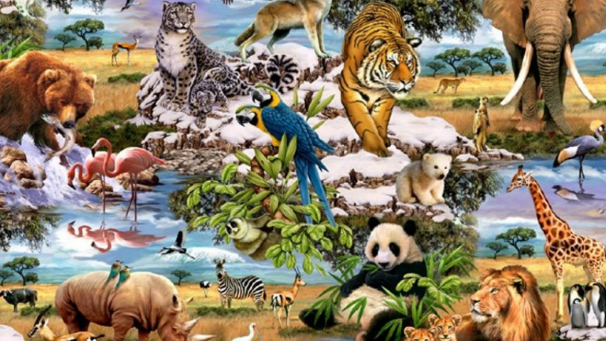 Real jungle animals