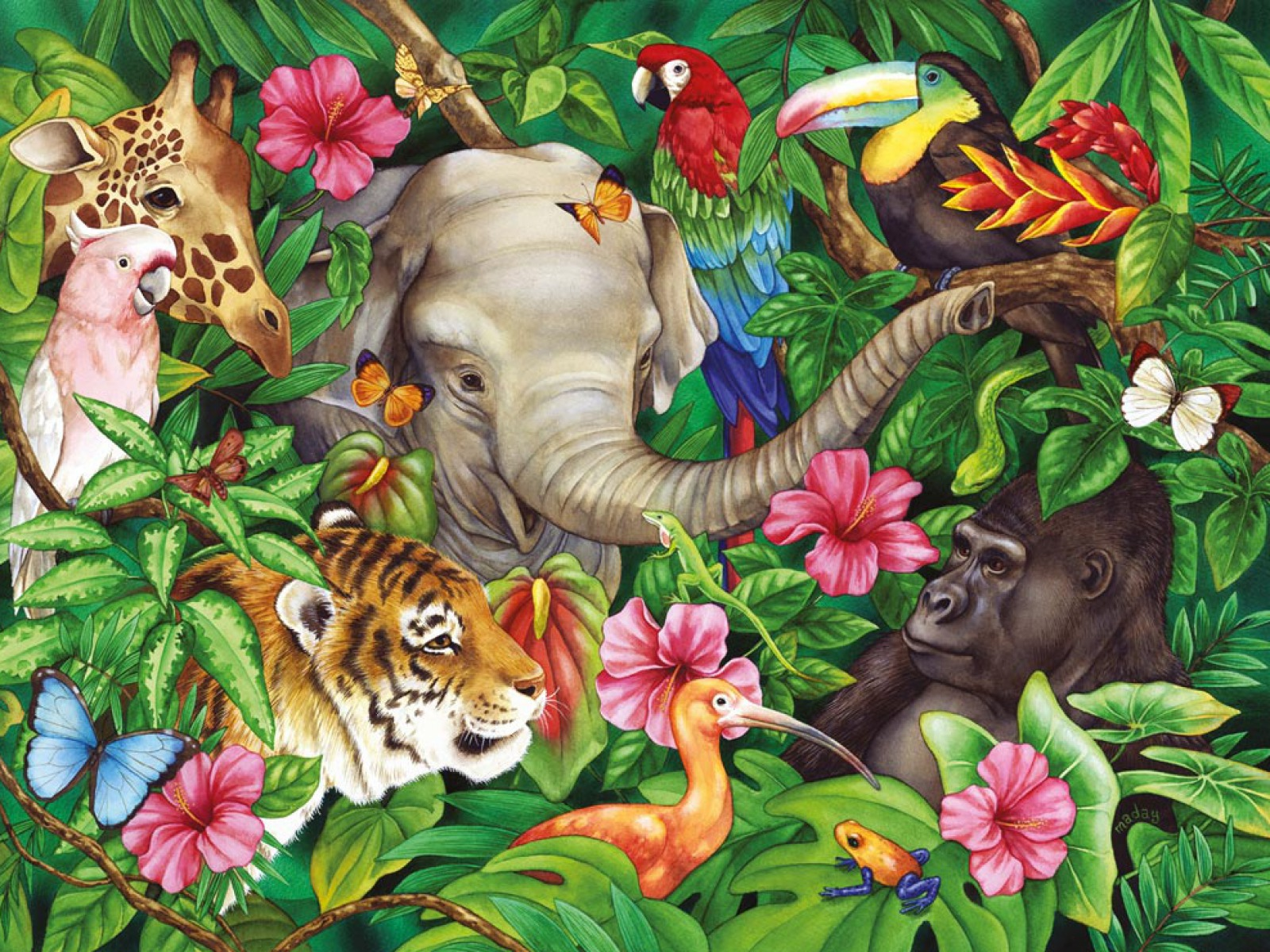 Image of: Nature Wallupnet 1600x1200 Jungle Animals Two Desktop Pc And Mac Wallpaper