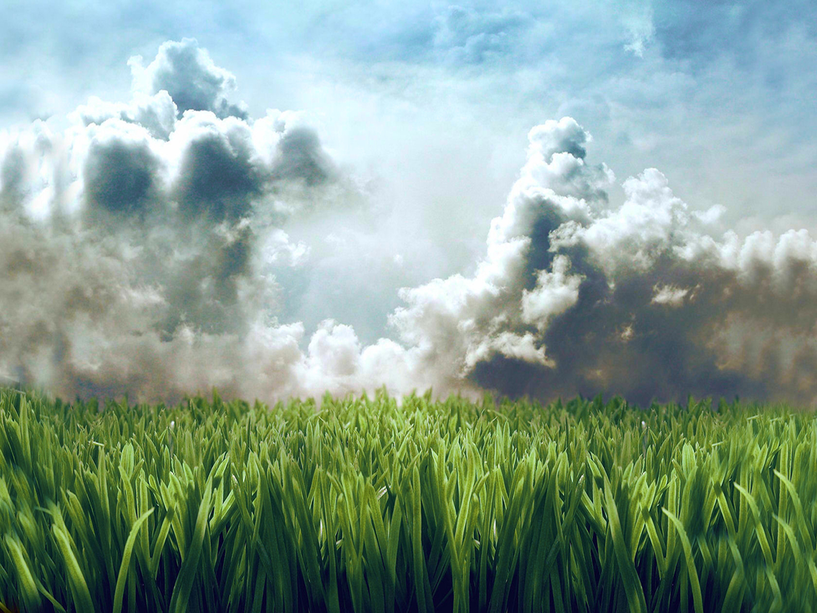1600x1200 lawn in the sky desktop pc and mac wallpaper