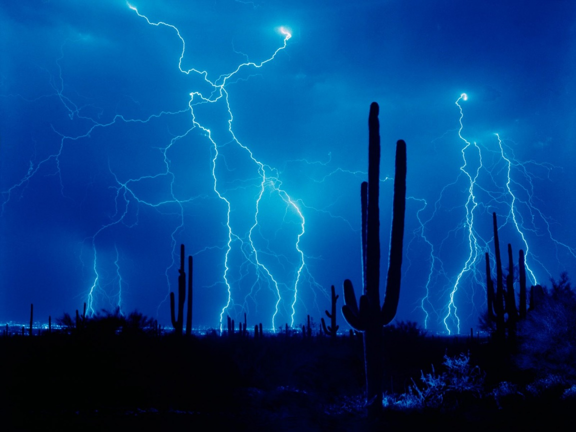 1152x864 Lightning and cactus desktop wallpapers and stock photos