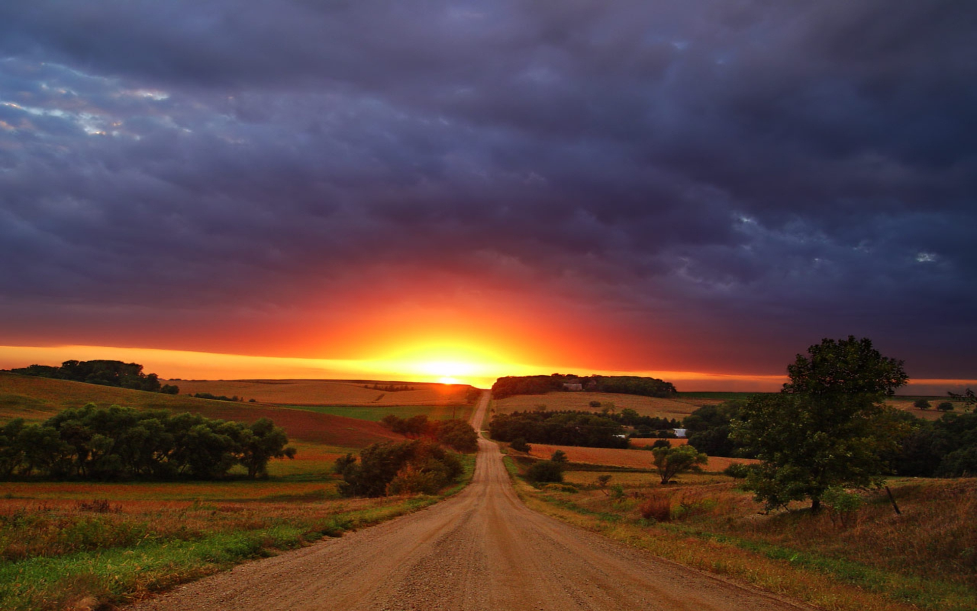 Image Long Road Fields Trees Sunset Wallpapers And Stock Photos