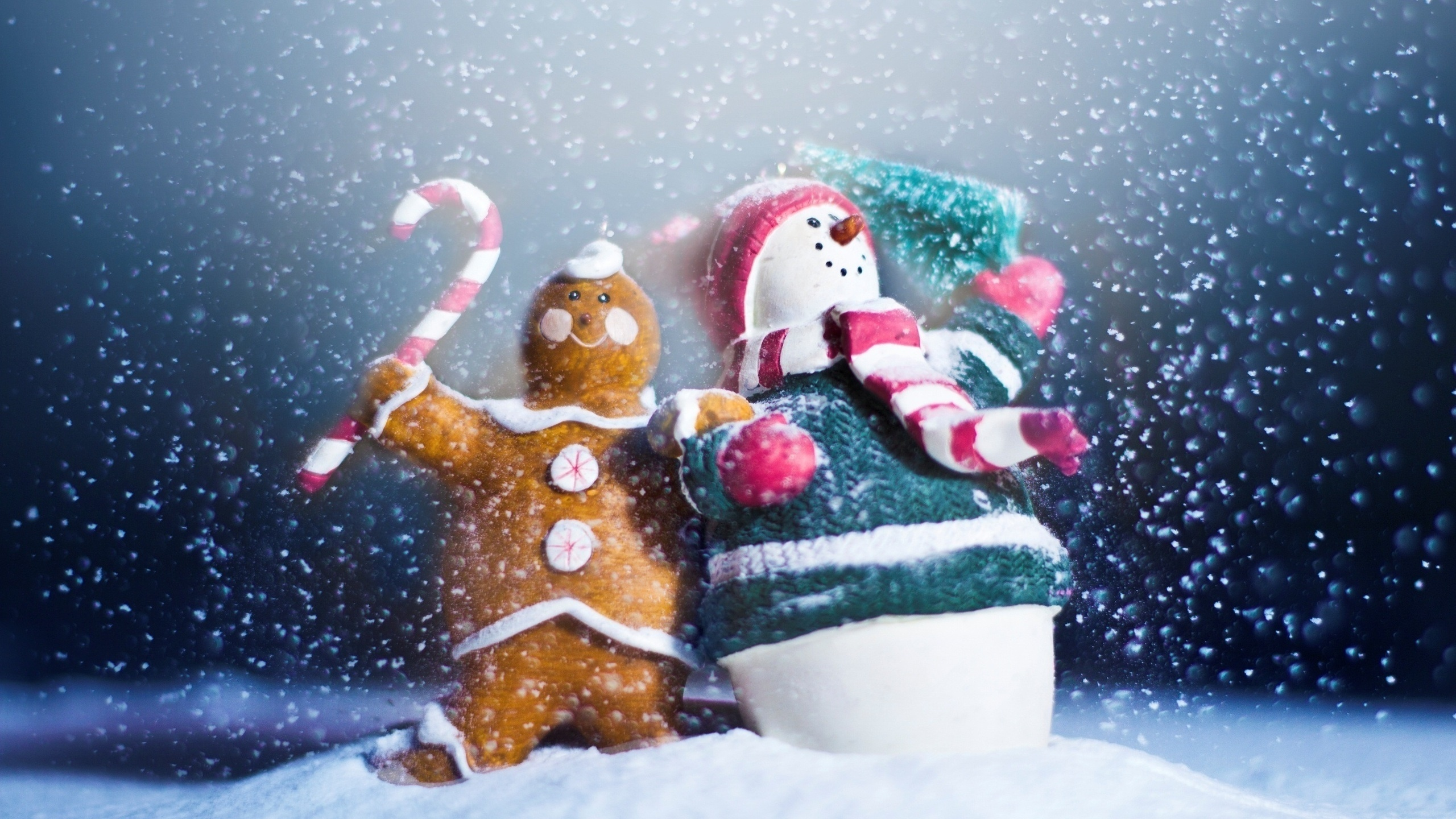 2560x1440 Merry Christmas and a Happy New Year desktop PC and Mac ...