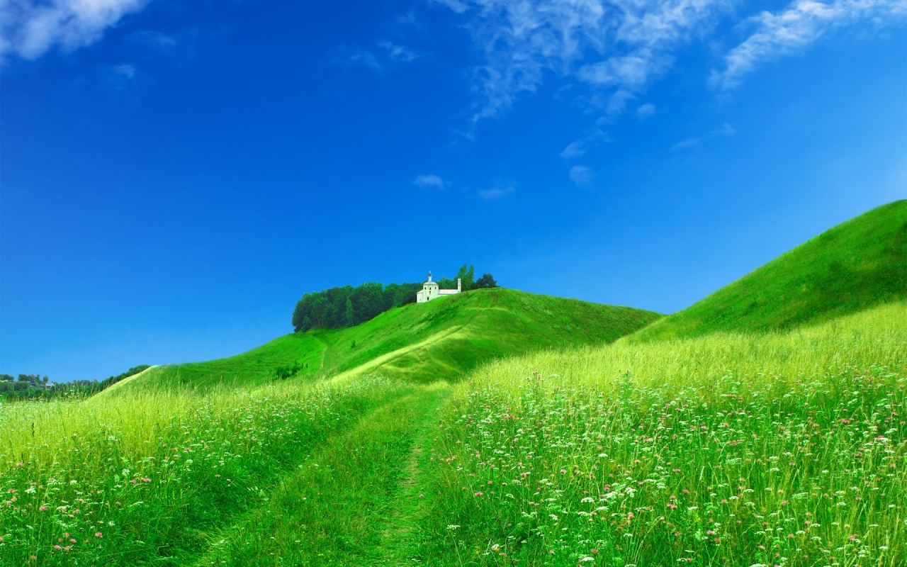 1280x800 middle of nature desktop pc and mac wallpaper - Wallpapers 1280x800 nature ...