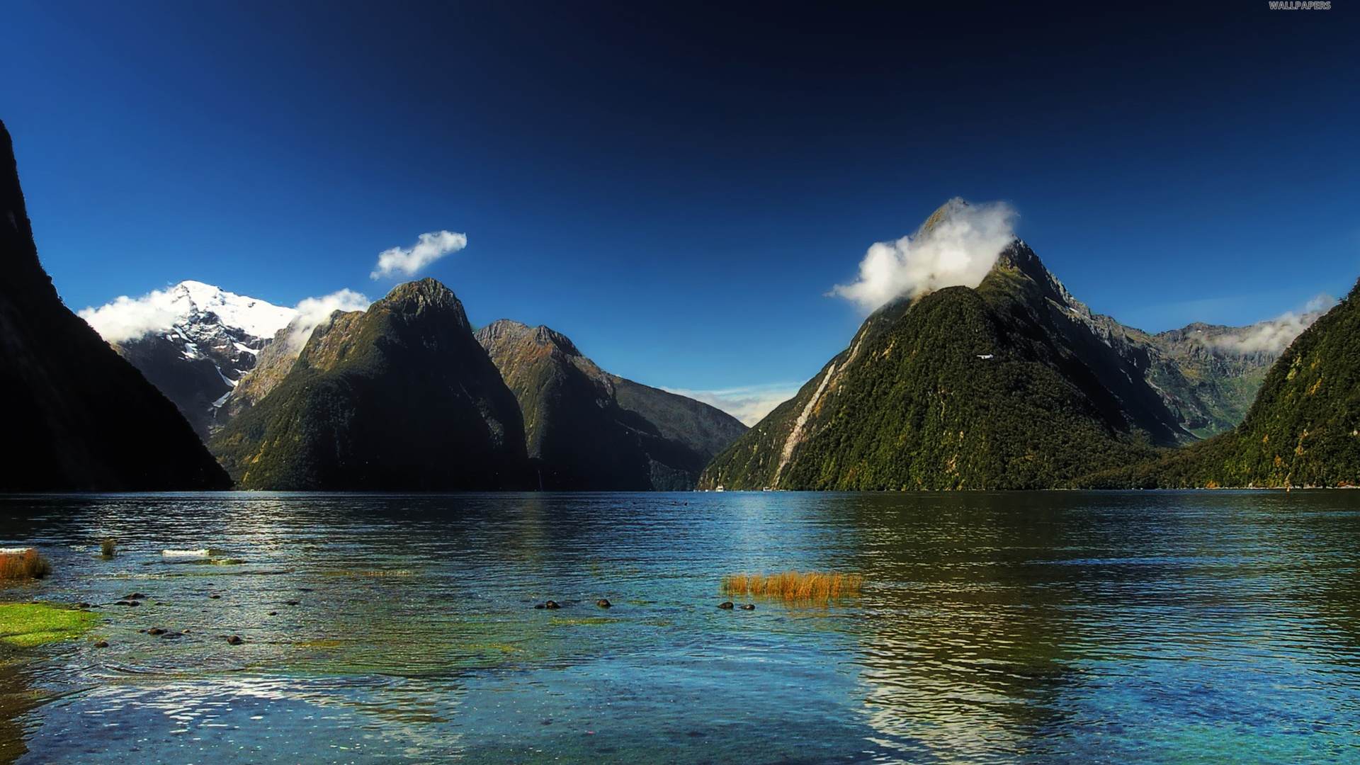 Atentat Noua Zeelanda Wallpaper: 1920x1080 Milford Sound New Zealand Desktop PC And Mac