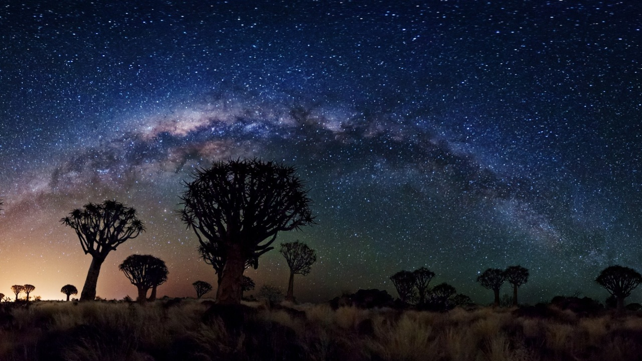 1280x720 Milky Way Over Quiver Tree Forest, space, nasa, galaxies, stars