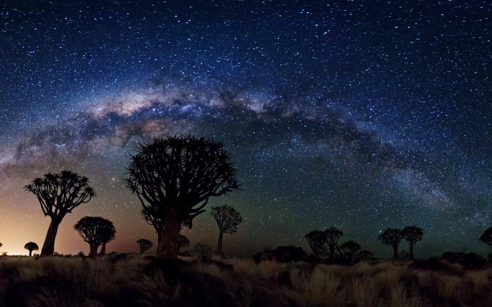1680x1050 Milky Way Over Quiver Tree Forest, space, nasa, galaxies, stars