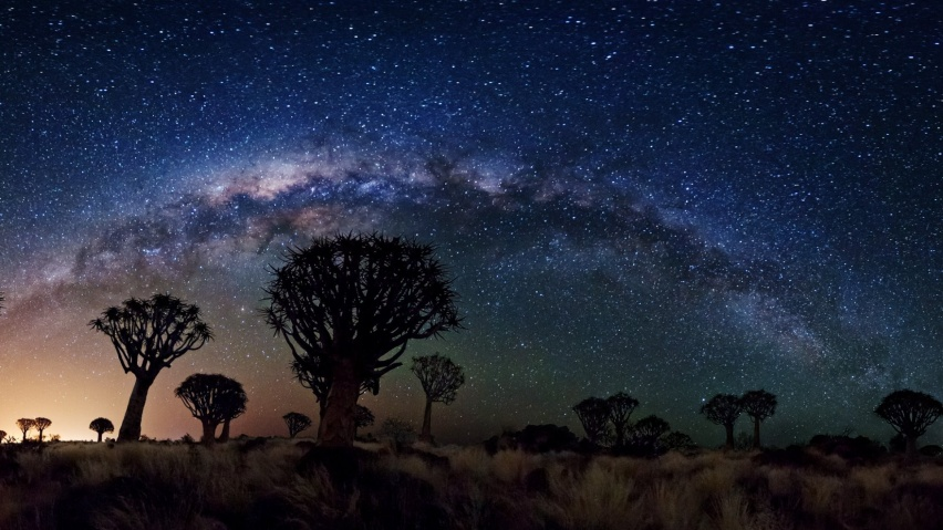 646x220 Milky Way Over Quiver Tree Forest, space, nasa, galaxies, stars