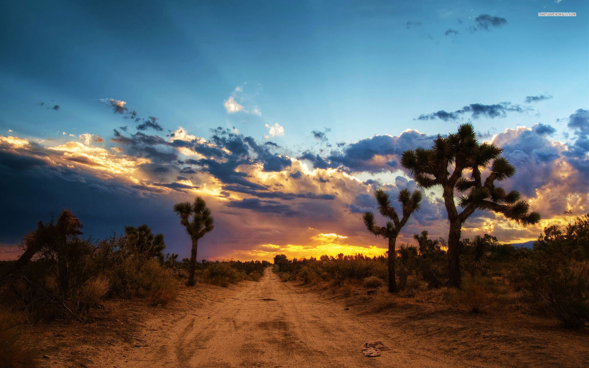 mojave desert scenery wallpaper - photo #1