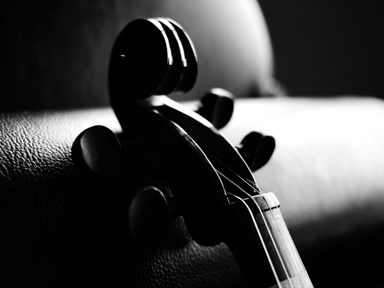 1280x960 Monochrome Violin
