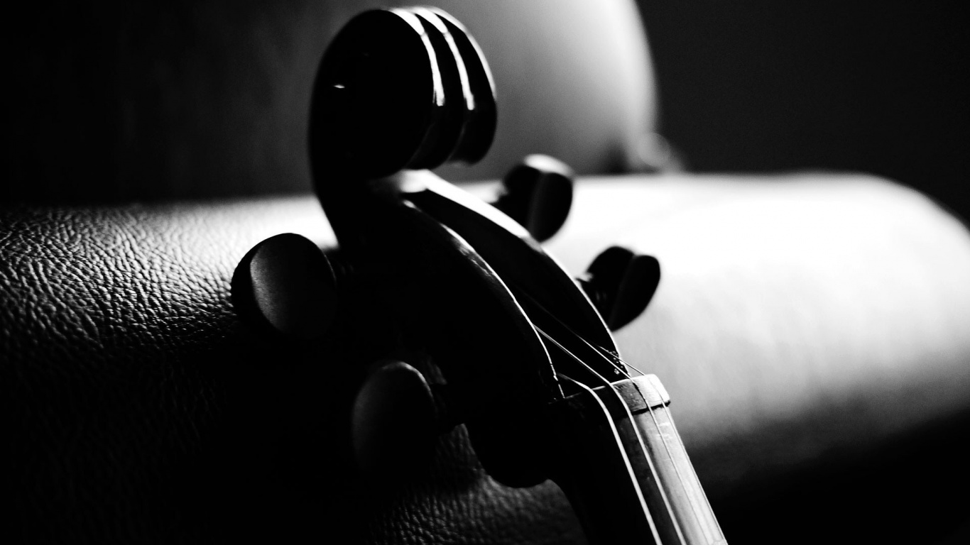 1366x768 Monochrome Violin