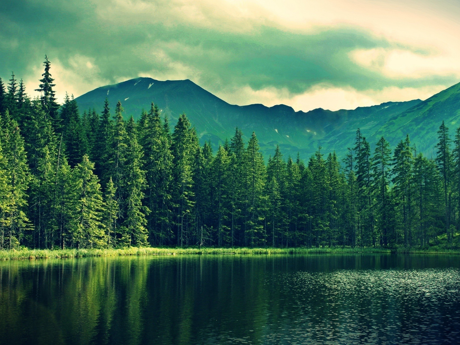 1600x1200 Mountain Green Forest Deep Sea Desktop PC And