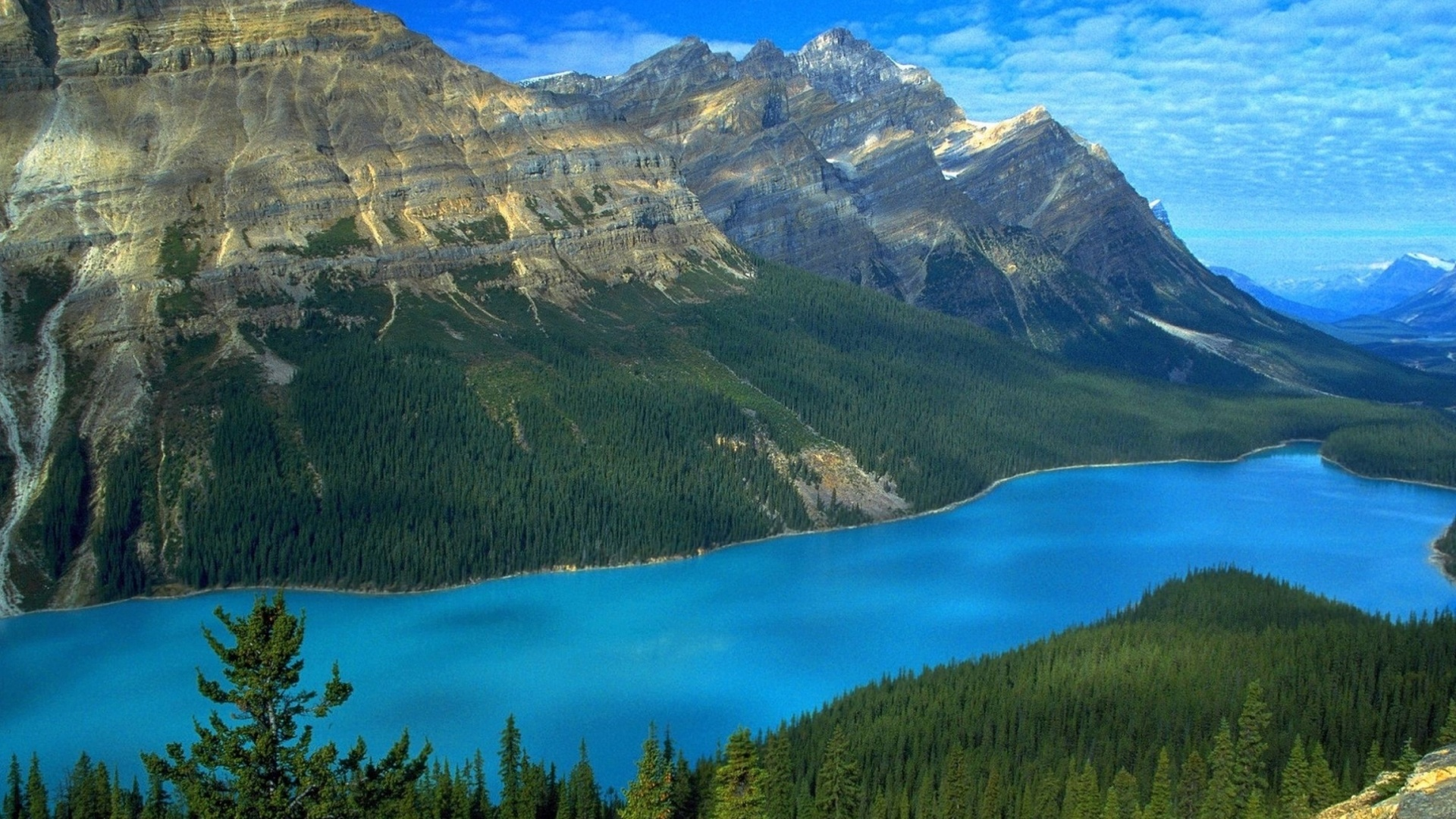 1920x1080 Mountains Forest Clear Sea Desktop PC And Mac Wallpaper