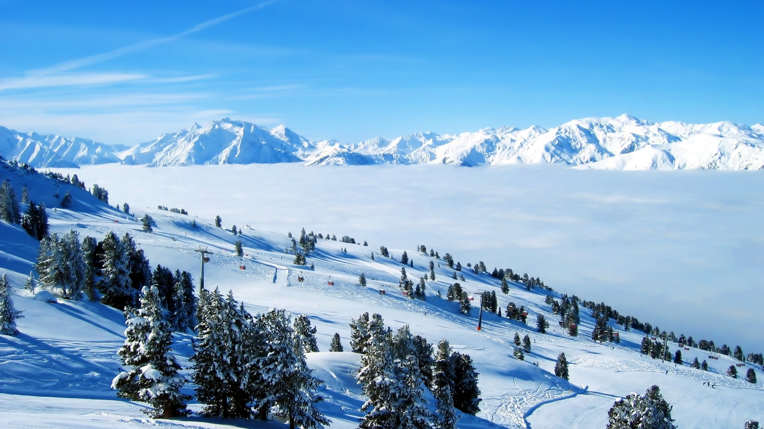 2560x1440 Mountains Snow Trees & Ski desktop PC and Mac ...
